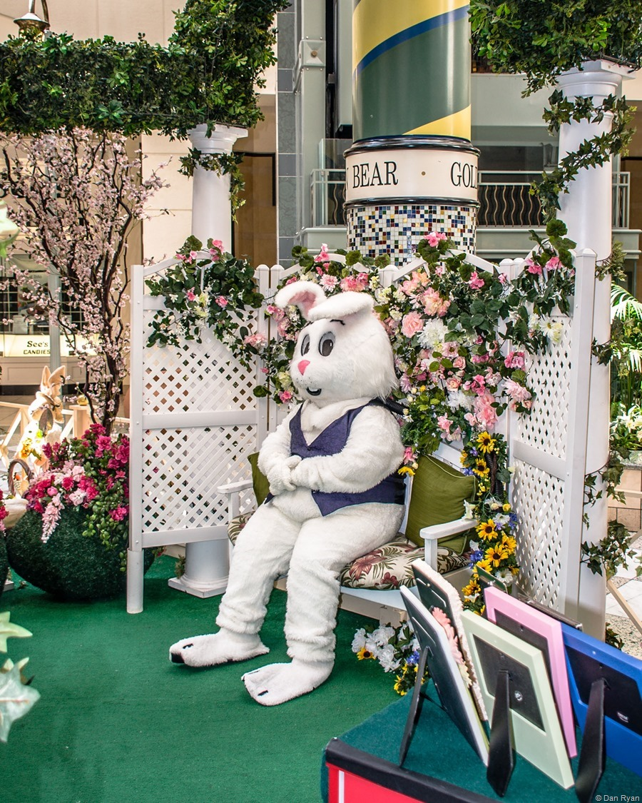 Easter Bunny at Hillsdale Mall in San Mateo CA