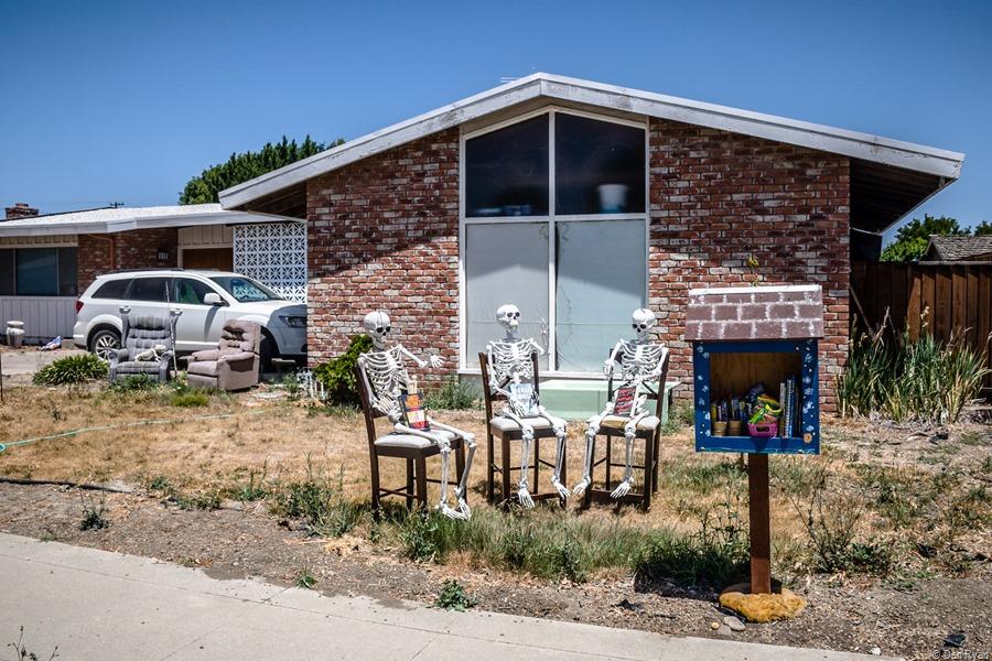 A front yard on California Street, part 2... Hollister, California, June 2021